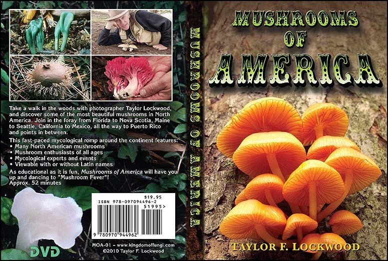 Mushrooms of America DVD by Taylor F. Lockwood