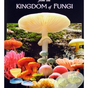 Treasures from the Kingdom of Fungi DVD by Taylor F. Lockwood