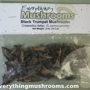 Black Trumpet Mushrooms, Craterellus fallax - .5oz pack