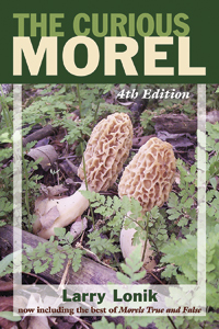 The Curious Morel 4th Edition by Larry Lonik