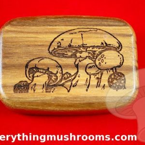 Mushroom Secret Box - Large, by Heartwood Creations