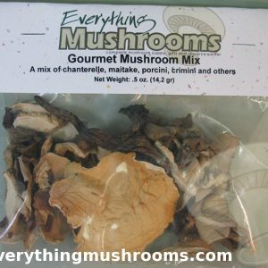 Mushroom Mix, Dried Wild Mushrooms - .5oz pack